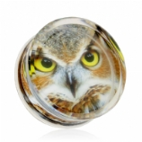 Owl Encased Logo Double Flared Acrylic Plug