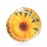 Sunflower Encased Logo Double Flared Acrylic Plug