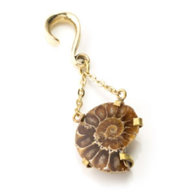 Brass Ammonite with Pearl Ear Weight - 3mm